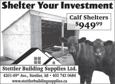 Shelter Your Investment