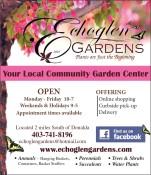 Echoglen Gardens Plants are just the Beginning