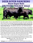 Deer River Ranching Black Angus Bulls Private Treaty Sale