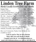 Linden Tree Farm Hardy Locally Grown Trees and Shrubs